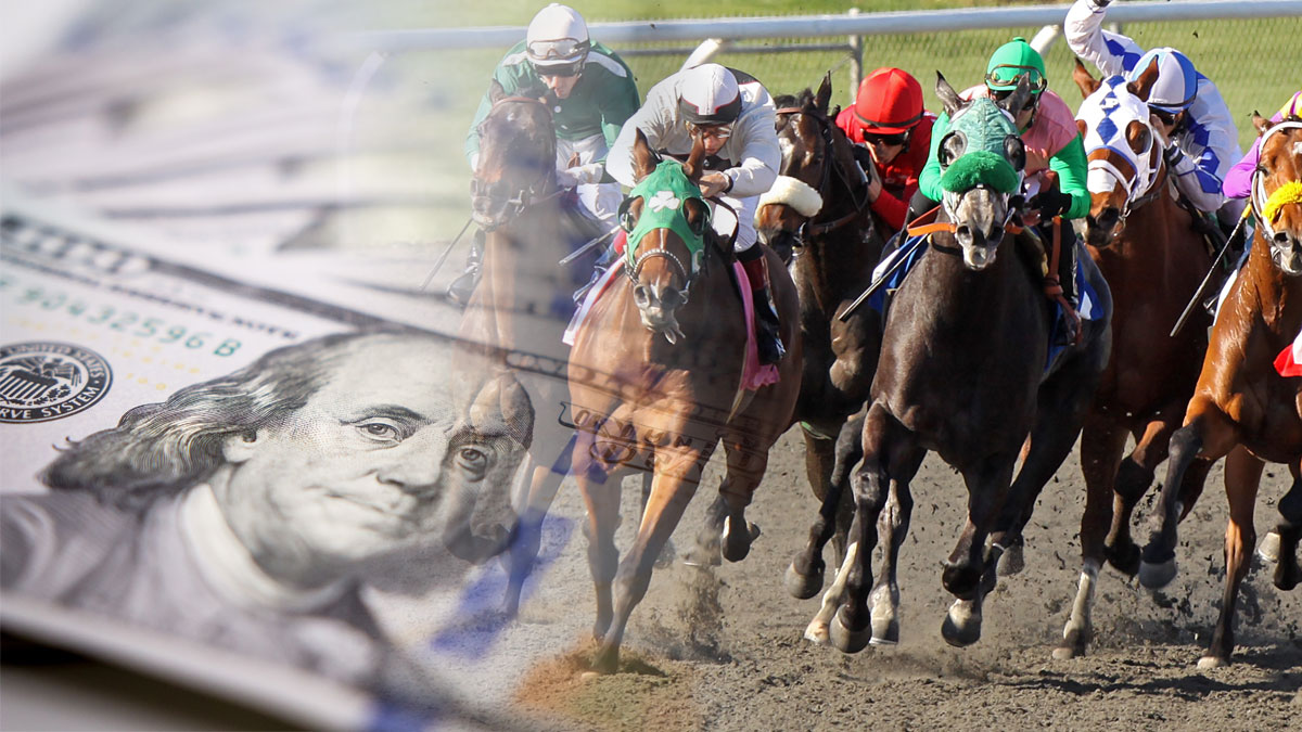 Why Parimatch is the Best Place for Horse Racing Betting?
